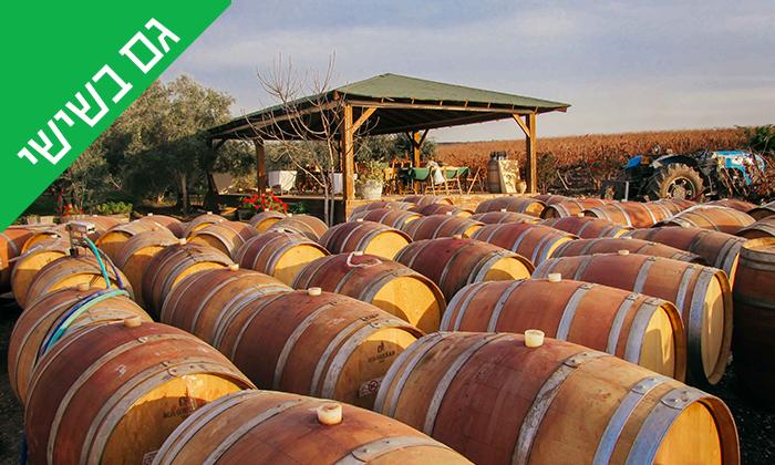 6 סיור וטעימות יין ביקב Bravdo, כרמי יוסף