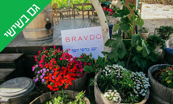 8 סיור וטעימות יין ביקב Bravdo, כרמי יוסף