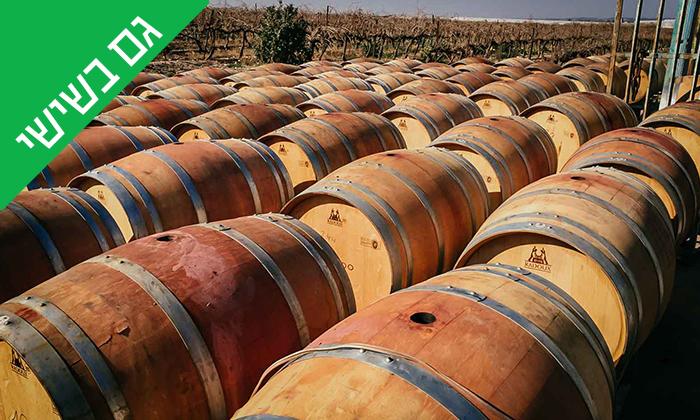 9 סיור וטעימות יין ביקב Bravdo, כרמי יוסף