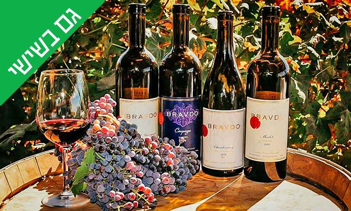 2 סיור וטעימות יין ביקב Bravdo, כרמי יוסף