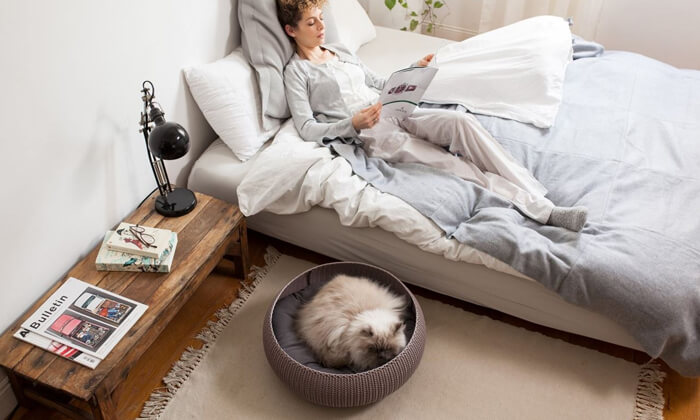 3 כתר: מיטת חתולים סרוגה