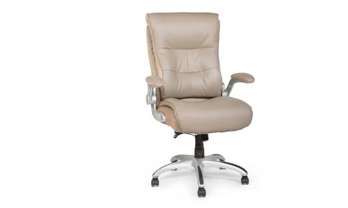 """5 ד""""ר גב: כסא מנהלים אורתופדי SHAPE"""