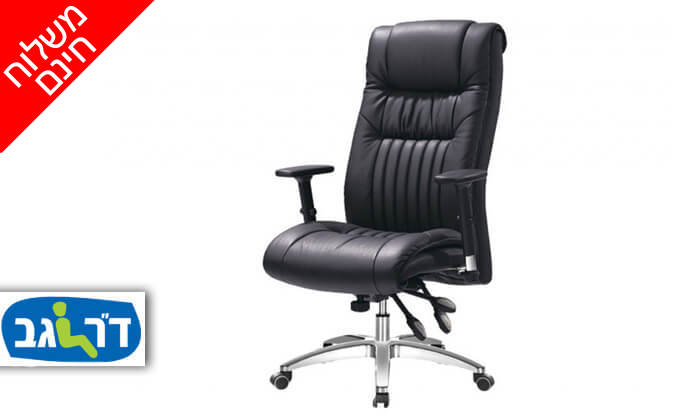 """2 ד""""ר גב: כיסא אורתופדי CONSUL - משלוח חינם!"""
