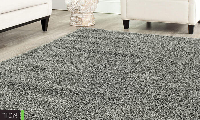 3 שטיח לסלון דגם שאגי