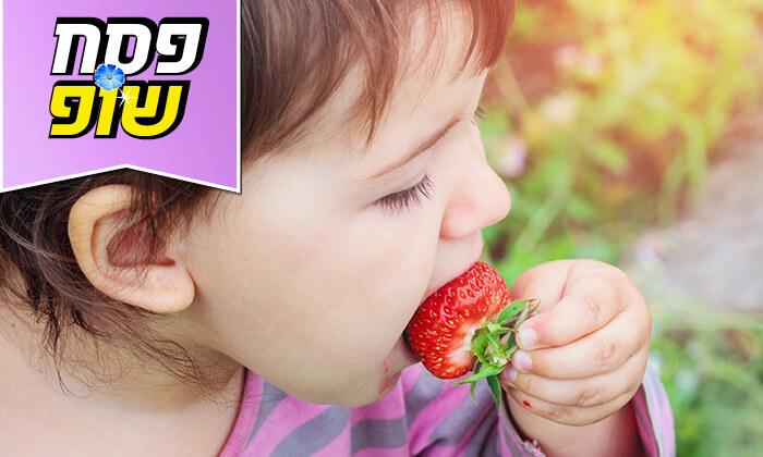 3 סתלבתות - קטיף תותים עצמי, הוד השרון