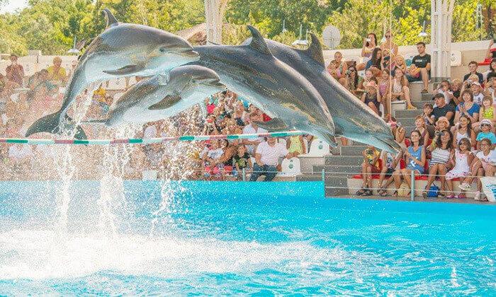 2 יולי-אוגוסט באודסה - טיול מאורגן למשפחות כולל גן חיות ופארק חבלים