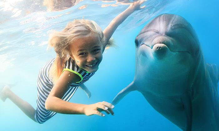 4 יולי-אוגוסט באודסה - טיול מאורגן למשפחות כולל גן חיות ופארק חבלים