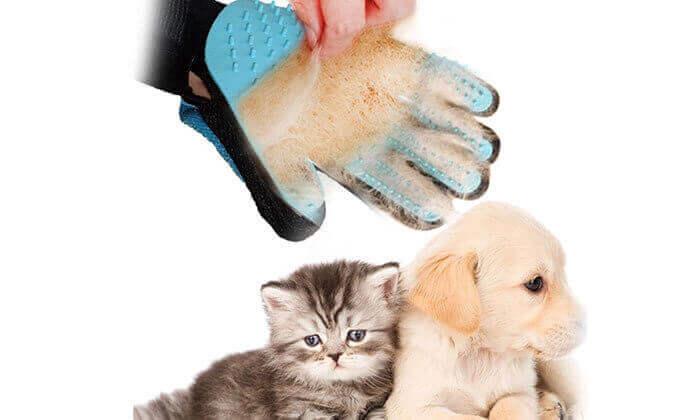 3 כפפת סירוק לבעלי חיים