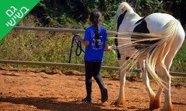 שיעור רכיבה על סוסים
