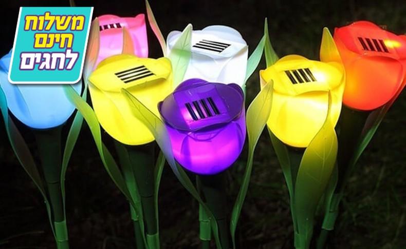 סט 10 מנורות טוליפ סולאריות
