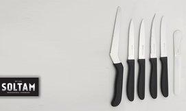 סט 4 או 6 סכינים של סולתם