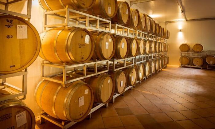 6 סיור וטעימות יין - יקב שטרן, קיבוץ תובל