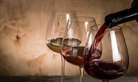 סיור וטעימות יין ביקב שטרן