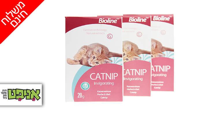 2 3 אריזות קטניפ לחתולים Bioline - משלוח חינם!