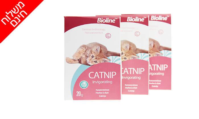 3 3 אריזות קטניפ לחתולים Bioline - משלוח חינם!