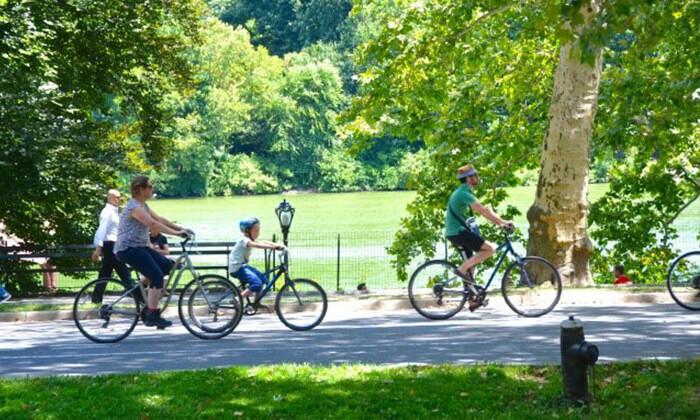3 ברלין עם האופניים - השכרה ל-24 שעות