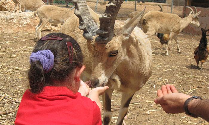 2 לגעת בטבע, חווה חקלאית בכפר הירוק