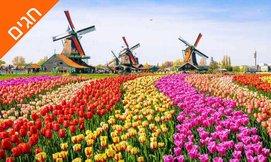 קיץ וחגים בכפר נופש בהולנד