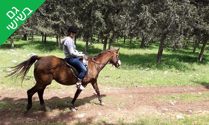 2 טיול רכיבה בגליל על סוסים - חוות סוסי אדמה, אלון הגליל