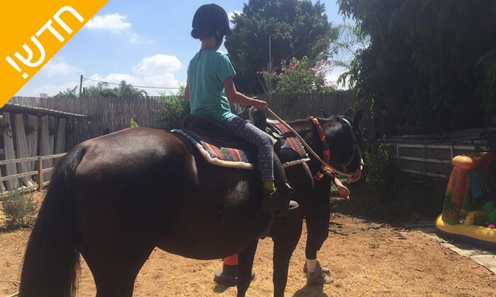 4 קייטנת רכיבה על סוסים - החווה של לאהנר, בני ציון