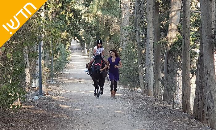 3 קייטנת רכיבה על סוסים - החווה של לאהנר, בני ציון