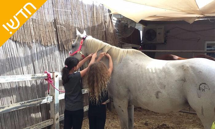7 קייטנת רכיבה על סוסים - החווה של לאהנר, בני ציון