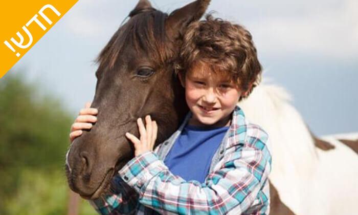 2 קייטנת רכיבה על סוסים - החווה של לאהנר, בני ציון