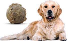 כדור בייסבול אכיל לכלב