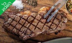 ארוחה ברשת רק בשר