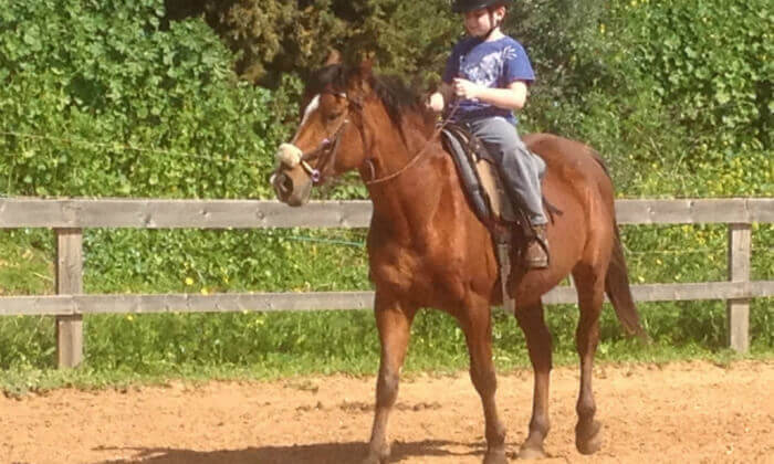 2 קייטנת רכיבה על סוסים בחופש הגדול, חוות סוסי אדמה - אלון הגליל