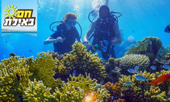 6 צלילת היכרות במועדון Ahla Diving,אילת