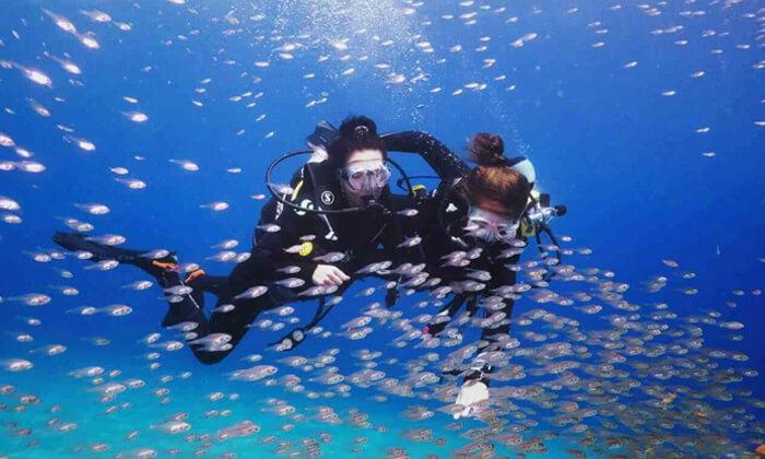3 קורסי צלילה במועדון Ahla Diving,אילת