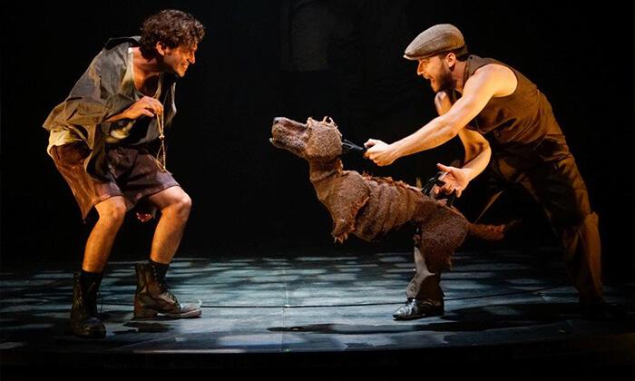6 מלך הכלבים - כרטיס להצגה בבית החייל, תל אביב
