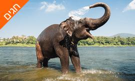 טיול מאורגן 10 ימים בדרום הודו