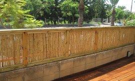 גדר במבוק AUSTRALIA GARDEN
