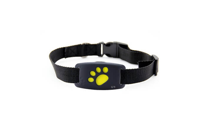 5 מכשיר איתור לכלבים וחתולים