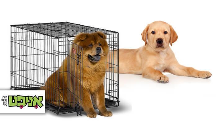 2 כלובי אילוף לכלב ברשת אניפט