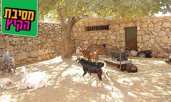 8 מוזיאון עין יעל - סיור חווייתי והשתתפות במגוון סדנאות מלאכה, ירושלים