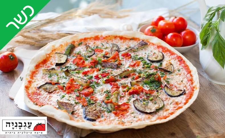 מגש פיצה XL בפיצה עגבניה
