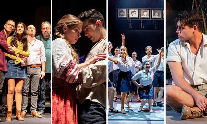 6 תיאטרון הבימה - מנוי ל-2, 4 או 6 הצגות