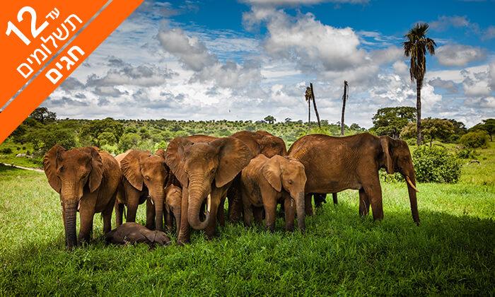 2 טיול מאורגן 9 ימים בדרום אפריקה -טבע פראי ואורבניות