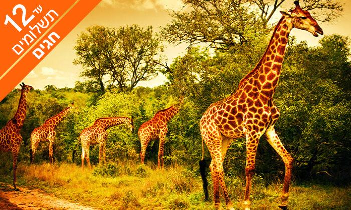 3 טיול מאורגן 9 ימים בדרום אפריקה -טבע פראי ואורבניות
