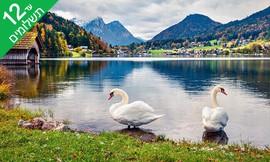 יולי-אוגוסט משפחתי באוסטריה