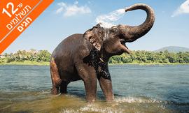 טיול מאורגן 9 ימים בדרום הודו
