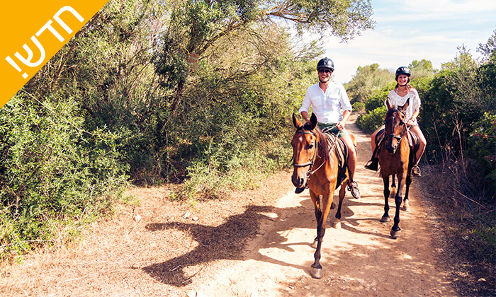 2 חוות האקליפטוס בנגב - רכיבה זוגית רומנטית על סוסים