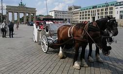 סיור על כרכרת סוסים בברלין