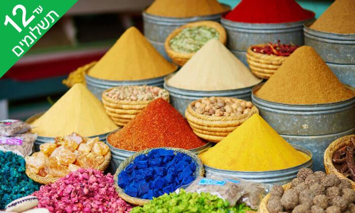 6 מאורגן 13 ימים במרוקו: מסע אל בירות מרוקו בין הרי הטודרה ומדבר הסהרה
