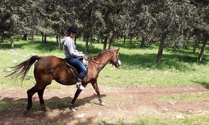 2 טיול רכיבה זוגי בגליל על סוסים - חוות סוסי אדמה, אלון הגליל