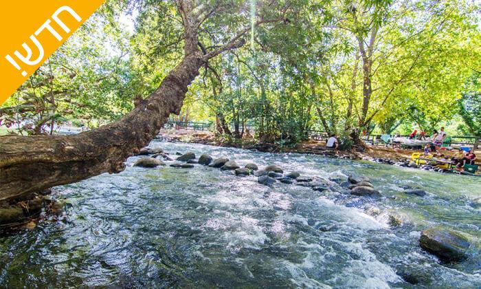 5 קמפינג על גדת החצבני - ירוק על הנחל