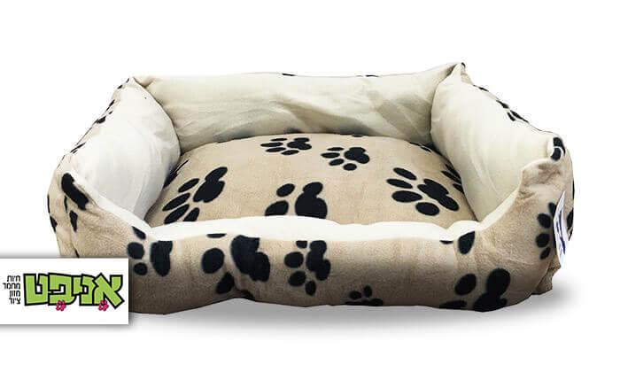 2 מיטה לכלב